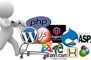 Website Development Services in USA